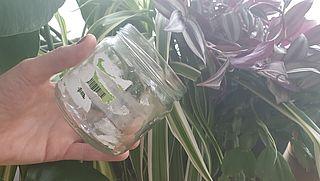 Etiket en lijmresten verwijderen met natuurlijke middelen