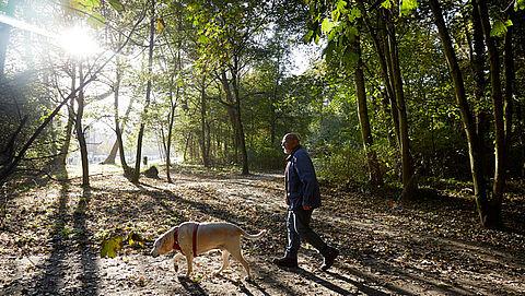 'Pas op met hond uitlaten tijdens warme middaguren vanwege heet asfalt'}