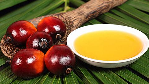 90 procent van palmolie in Nederlandse voedingsmiddelen is duurzaam}