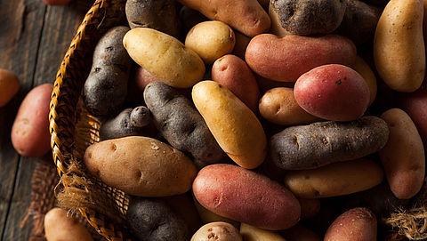 Bio-boeren nemen afstand van gebruik koper