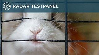 Nieuwe dierenwet: exit Flappie en Poekie? Deel jouw mening