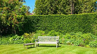 'Hopelijk willen meer mensen hun tuin vergroenen vanwege coronamaatregelen'