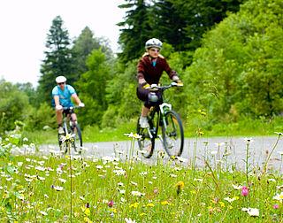 Schultz houdt vast aan helm voor snelle e-bike