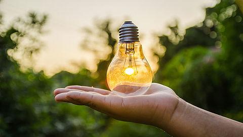 Meer lampen ingeleverd voor recycling