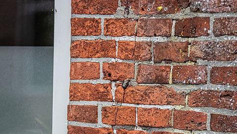 593 schademeldingen over aardbeving Groningen}