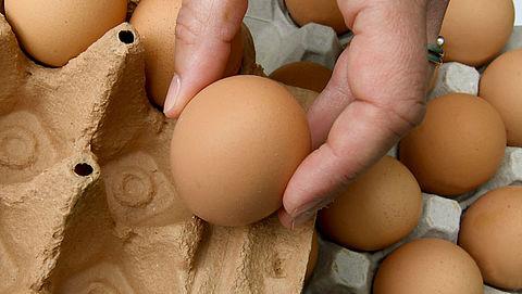 Nog geen besluit in zaak fipronil-eieren}