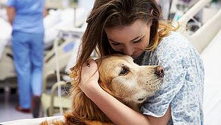 'Laat patiënt huisdier meenemen naar zorginstelling'