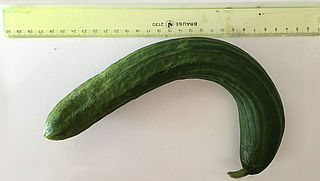 'Misvormde' groenten geliefder dan supermarkt denkt