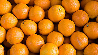 AH-app laat misstanden sinaasappelplantage niet zien