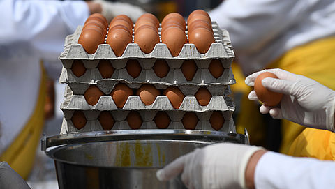 Chickfriend gebruikte naast fipronil ook amitraz, stof tot nog toe niet in eieren gevonden