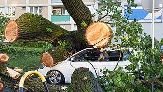 Aantal meldingen stormschade neemt laatste jaren flink toe