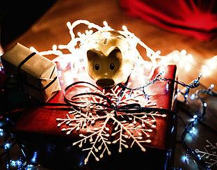 Kerstkaart en –boom populair, vuurwerk mag achterwege blijven