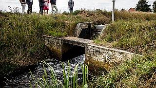 Grondwaterstand in delen van Nederland te diep weggezakt