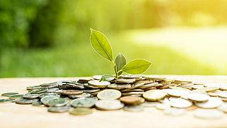 Sparen: waarin investeert jouw bank?