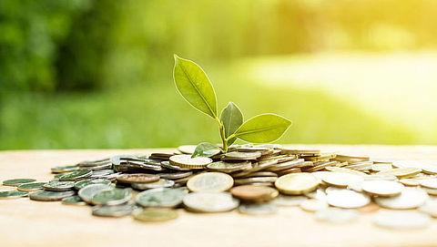 Sparen: waarin investeert jouw bank?}