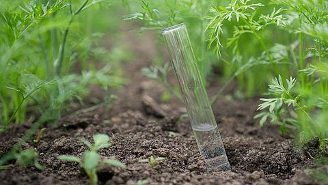 Schimmel kan landbouwgif vervangen