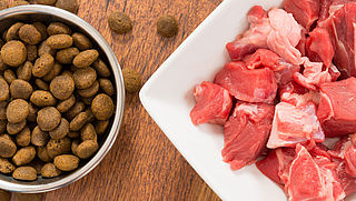 'Rauw vlees voor huisdier kan gevaar opleveren voor mens'