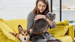 Chemische bestrijdingsmiddelen voor dieren tasten ook het baasje aan