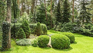 Zo maak je je tuin lenteklaar