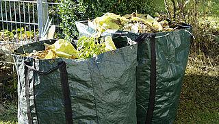Maak je tuin winterklaar met deze 9 tips