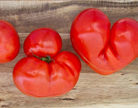 Gekke groenten tegen voedselverspilling}