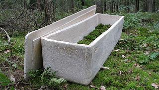 Nieuwe uitvaartmogelijkheid: begraven worden in een 'levende' doodskist