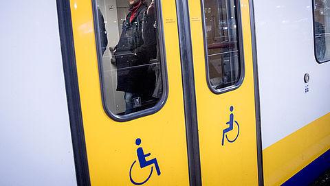 Maandag in Radar: Rolstoeltoegankelijkheid van treinen | Bravecto}