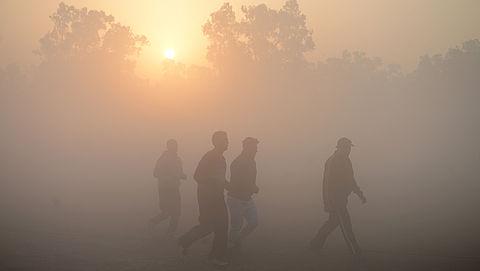 RIVM waarschuwt voor verslechterde luchtkwaliteit door zomersmog}