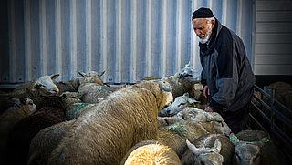 'Verbied het offeren van dieren'