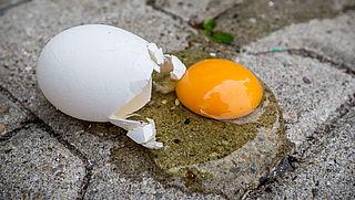 Pluimveehouders willen snel afspraken over 'schone eieren'
