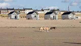 Enkele hotels en strandhuisjes gaan weer open, onder voorwaarden