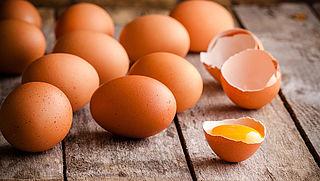 Overheid schoot tekort bij eierschandaal