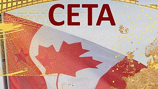 'Vrijhandelsverdrag CETA gaat tegen de grondwet in'