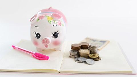 Waarschuwing voor te hoge schulden bij Nederlandse huishoudens