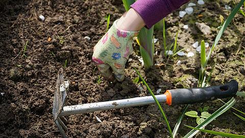 Maak je tuin lenteklaar met deze 13 tips}