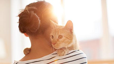 Heb je huisdieren? Wetenschappers waarschuwen voor hepatitis E