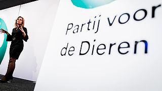 PvdD probeert onverdoofd slachten wederom te verbieden