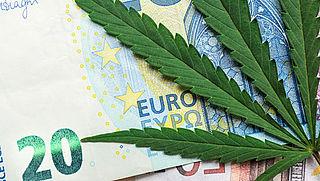 Kosten kweek eigen medicinale cannabis aftrekbaar