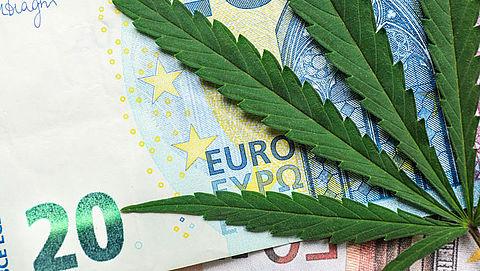 Kosten kweek eigen medicinale cannabis aftrekbaar}
