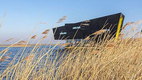 Recreatiegebied Oostvaardersplassen gaat ingrijpend veranderen