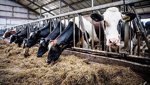 Fosfaatproductie voldoet aan EU-regels