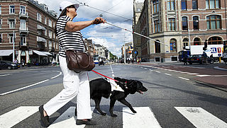 Hotels niet op de hoogte van regelgeving geleidehonden