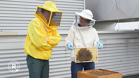 Lokaal eten en een bijenkast? | Fons checkt duurzame tips