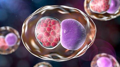 Wat is chlamydia en wat doe je ertegen?