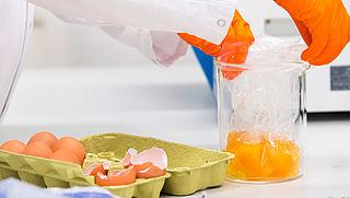 Onderzoek naar besmette eieren in volle gang