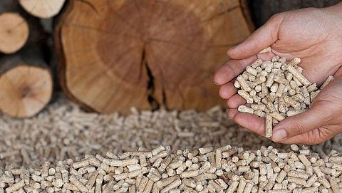 Kamermeerderheid: 'Stop subsidie op biomassa'