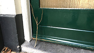Politiewaarschuwing: Pas op voor takjes bij voordeur!