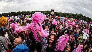 Minder festivals door strengere regels en gedoe
