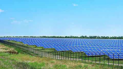 'Natuur voorop bij aanleg zonnepark'