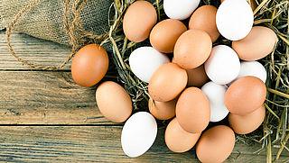 NVWA roept besmette Poolse eieren terug